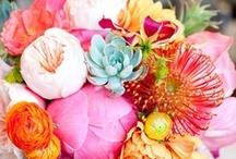 Flower Power / by MJP *