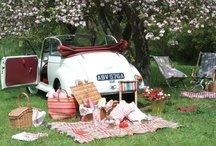 ✿⊱✿ Picnic Paradise ✿⊱✿  / by Kammy Jaggers