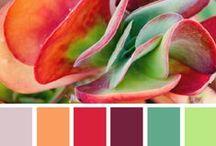 Palettes I Love...