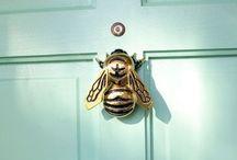 Home Decor / by Michelle Catucci