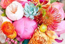 Flower arranging / by Ashley Zahn