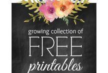Free Printables / by Ashley Zahn