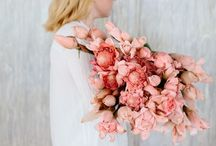BOUQUET. / by FESTIVAL BRIDES