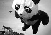 Inspirational - Balloons / Air floats.