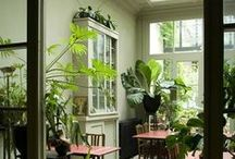 Formerly Known as the Hipster Garden / Funky, repurposed and aesthetically outstanding. Practical gardening inspiration for Bohemian style, self-sustainment and those that like to be different. Transitional interior design and home decor. Vintage, retro modern. #BohoChic #cleverlife #kristennicole