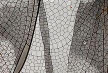 Inspirational - Textures / Rub