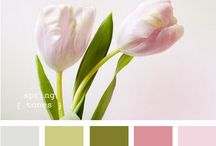 Colour Pallettes / The purest and most thoughtful minds are those which love color the most.    / by DebTim