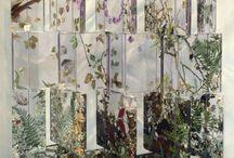 Foliage / what i love