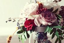 wish to be a florist / by Maryam Abrishamkar