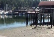 Gig Harbor Neighborhood Videos