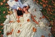 Wedding (One Day!)