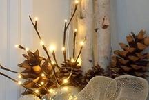 Holiday Decor / Events / Seasonal