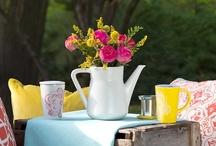 Tea Shop   Spring 2013 / by DAVIDsTEA