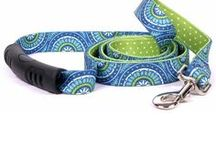 Dog Collars, Leads,etc