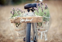 custom | la bicyclette / by Becca | CAKE.