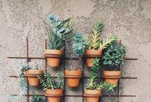 Home | Garden / by Elizabeth Kinkaid