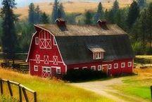 BARNS / Old barns