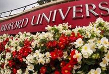 As Scene at Radford / Daily photos of students, faculty, staff, alumni and friends around the Radford University community.  / by Radford University