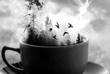 { strange brew } / the weird, wild and wonderful / by Inner Gypsy