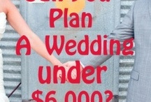 Wedding info Good To Know / by Lisa Davis