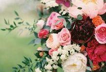*Beautiful Blooms*
