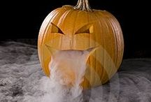 Halloween / by Ashley Harris