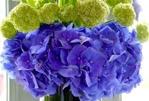 Floral / by Georgia Van Vickle