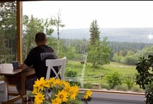 Cariboo & Chilcotin Bed & Breakfasts / Enjoy Cariboo Chilcotin Bed & Breakfast accommodation when visiting in this region around 100 Mile House and Williams Lake British Columbia / by BC Bed & Breakfast Innkeepers Guild