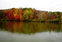 Fall 2011~ Upstate, NY~  / Photography by; Wendy Jones