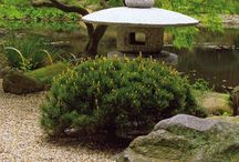 Garden & Landscape / I have a thing for Japanese gardens.
