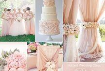 Peach Weddings / Wedding Ideas and accessories for Peach colour schemes