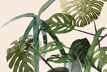 Botanisch / Botanisch is ook een trend van 2016 en wij zijn er dol op!