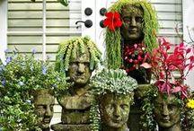 Terrariums/Planters  / by Nancy Turner