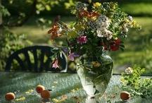 Flowers / by Genia Palace