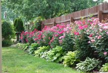 Backyard / My backyard will look like one of these........ / by GGs Boards