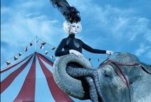 Circus Maximus / by Kristen Vinakmens
