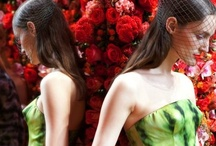 Fall 2012 Couture / by Kristen Vinakmens