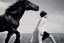 B&W Photography II / by Kristen Vinakmens