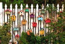 *Garden* / by Grace Chartier