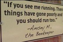 Bees &  Beekeeping / by Kate {Beatriz Aluares}