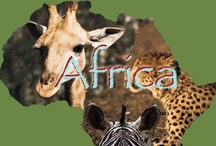 Africa Travel  / My favorite travel destinations & experiences in Africa. I have been so fortunate to travel around the world.  If you are looking to travel to Africa, check out these destinations and activities that were a once in a lifetime opportunity for me. Everyone should see these places and or enjoy the activities.  / by Linda Ralston