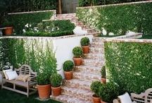 Outdoor Garden ❤ /  Outdoor aka The Garden / by Ash Shila ❤