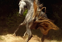 Spirit of the Horse / by Tanya Satre