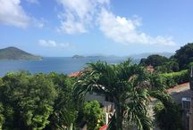 USVI (U.S. Virgin Islands) / I live on St Thomas and love my island home. Here are some of my pins about my Virgin Islands and re-pins of other USVI-related pins