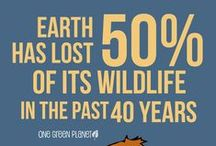 Never Give Up Hope ... / One person can make a difference. Together we can #EndExtinction