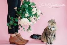 faded sentiments. / lifestyle and features blog posts from the faded sentiments blog