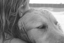 Dog Owner - True Love / by Melissa Grubich