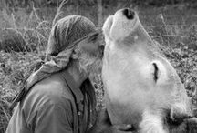 """Animalismo / """"Si nunca has amado a un animal, una parte de tu alma permanecerá dormida"""" """"Until one has loved an animal,  a part of one's soul remains unawakened."""" ~ Anatole France"""