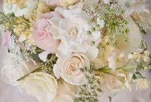 Weddings  / by Bonnie Lester