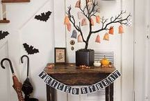 Halloween / by Kat Midgett